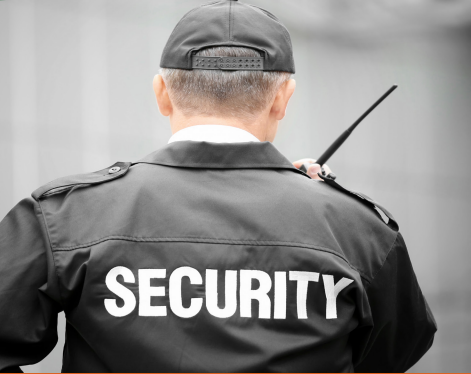 BSIS Security course